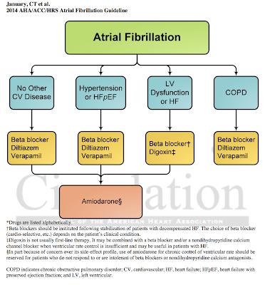 atrial fibrillation guidelines 2016 pdf