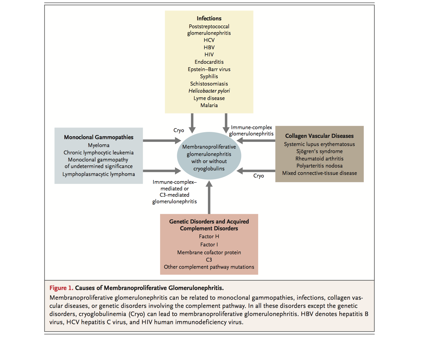 nephrotic vs nephritic syndrome pdf