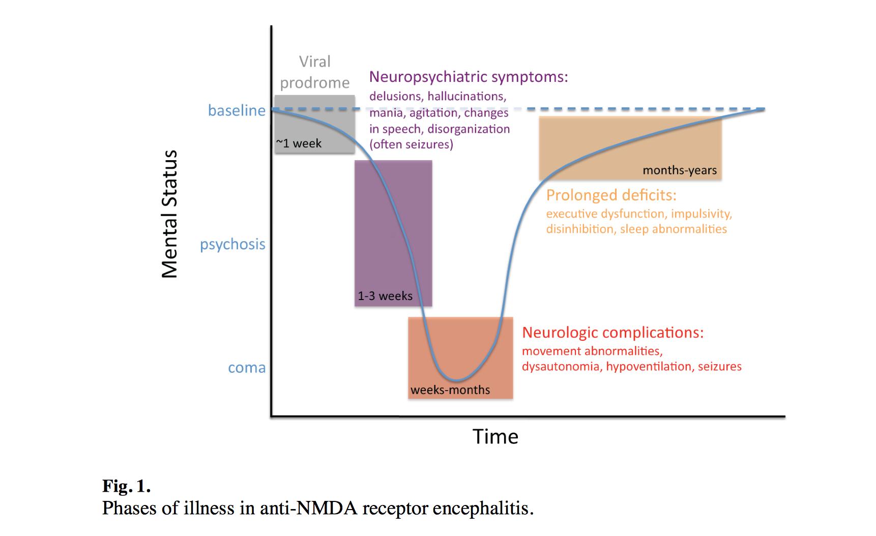 Encephalopathy Encephalitis Im Reference