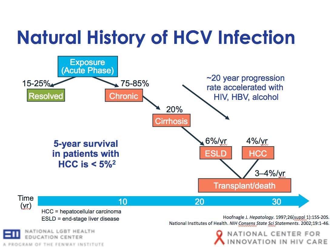 HCV & other Hepatitis Viral Infection - IM Reference